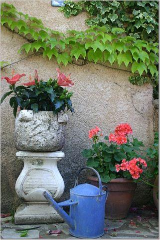 wateringcanfrance